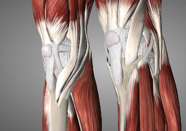 前交叉韧带重建术后为什么要练伸膝?